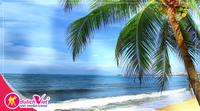 Khám phá vẻ đẹp bãi trú Nha Trang